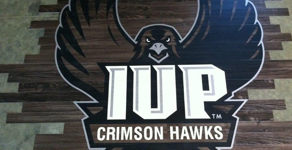 professionally designed logo displayed at the Indiana University of Pennsylvania